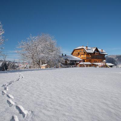 Due passi sulla neve