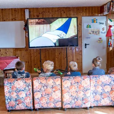 Maxi schermo in taverna