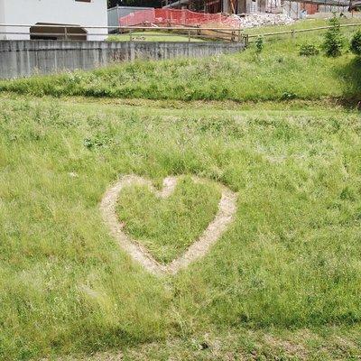 cuore nel prato w