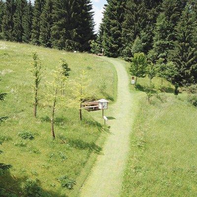 foto con drone sentiero prati w