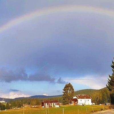 arcobaleno w